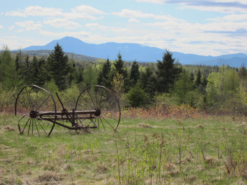 Spring colors in the Mount Katahdin region in field overlooking Baxter State Park