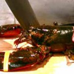 Happy Holidays….2 more shopping days till National Lobster Day!
