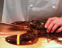 Killing a Live Maine Lobster