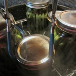 CANNING, FREEZING AND OTHER FOOD PRESEVATION METHODS