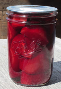 Old Maine Pickled Beet Recipe