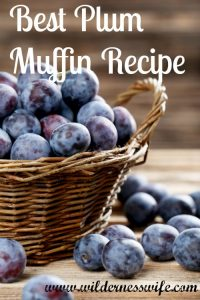 Best Plum Muffin Recipe, Plum Recipes, Muffin Recipes
