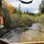 North Maine Woods stream, Blaze Orange Hunting vest
