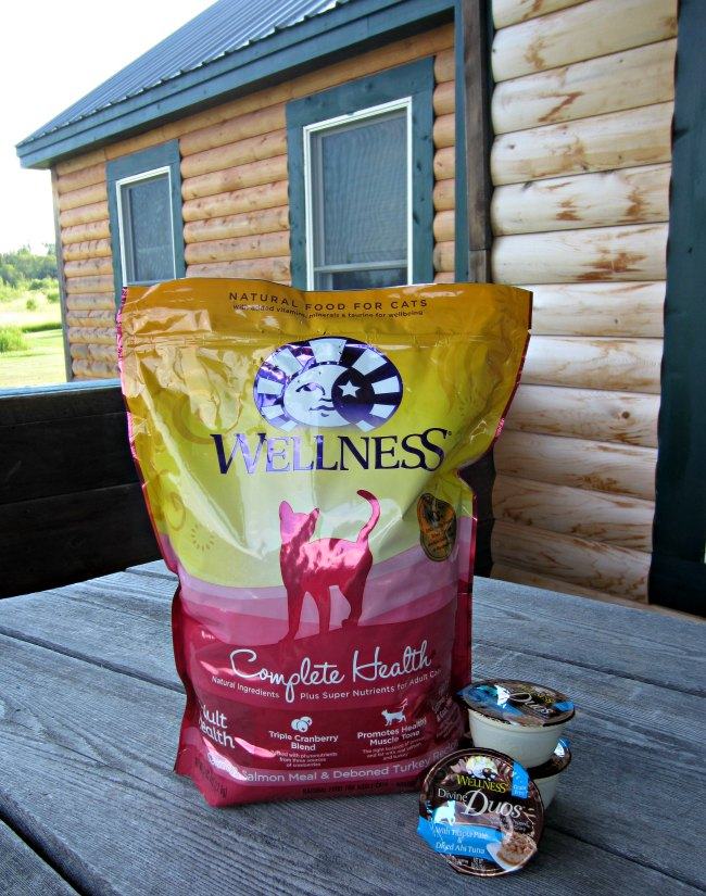 Wellness cat food, cat food, kitten food