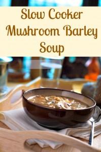 Mushroom soup, vegetable soup, slow cooker soup