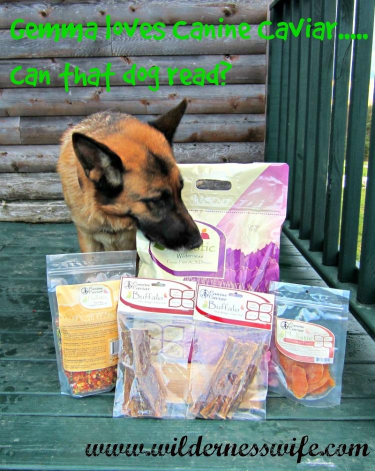 Dog treat, holistic dog treat, grain free dog treat, gluten free dog treat