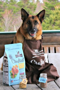 Hill's IdealBalance-Crafted, dog food cat food