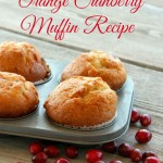 Tasty Orange Cranberry Muffin Recipe