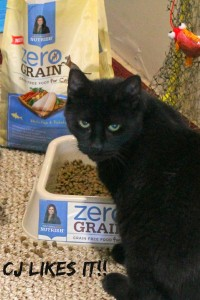 Rachael Ray Nutrish Cat Food, Nutrish Pet Food, Rachael Ray special recipe for cats