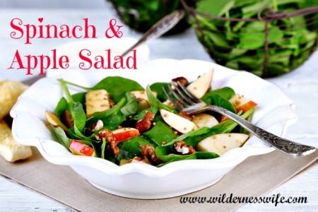 apple spinach salad, apple, spinach, salad, tossed salad,