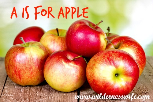 apple, apples, apple recipe, apple recipes, baked apples, baked appl recipes,