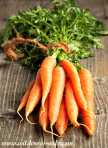 carrots, carrots fresh from garden, slowcooker curried carrot soup, soup, slow cooker recipe, crock pot recipe, carrot recipe