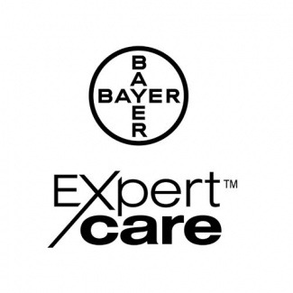 Bayer Expert Care products for dogs and cats, cat skin care, dog skin care, dog shampoo, itchy dog skin