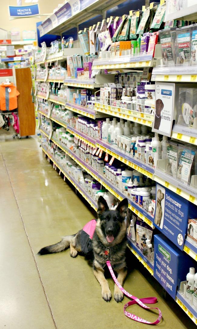 Malibu-Bayer-PetSmart1