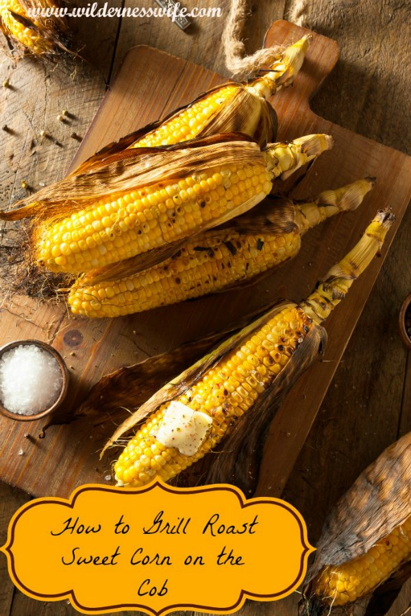 Perfectly roasted sweet corn on the cob right of the barbecue grill