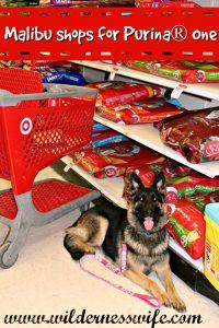 Purina One, German Shepherd Dog, Housebreaking your dog