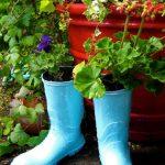 My Winter Herb Garden…Deep asleep!