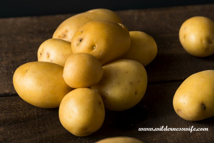 Yukon gold potatoes washed and ready to peel.