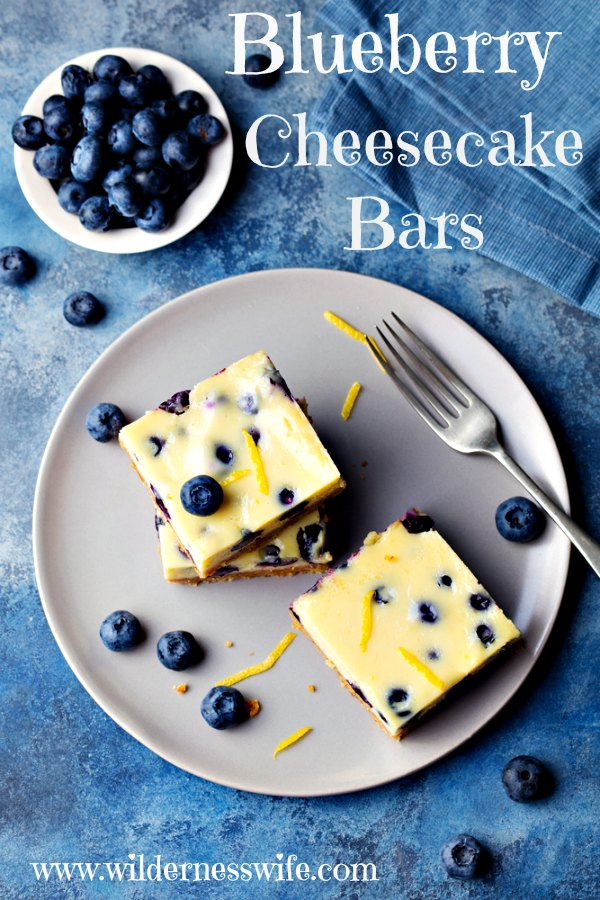2 Blueberry Cheecake Bars, made from our No-Bake recipe, on a grey plate with a fork