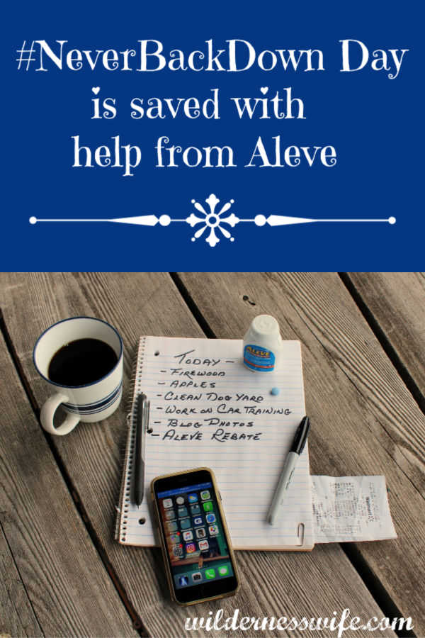 #advertisement  #Aleve saves another #NeverBackDown Day when I am just too busy to be boothered by pain. #Aleve #NeverBackDown #cbias #collectivebias
