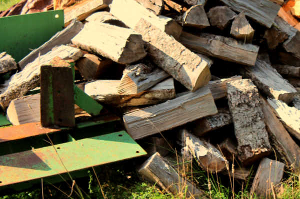 Pile of dry firewood waiting to be stacked.