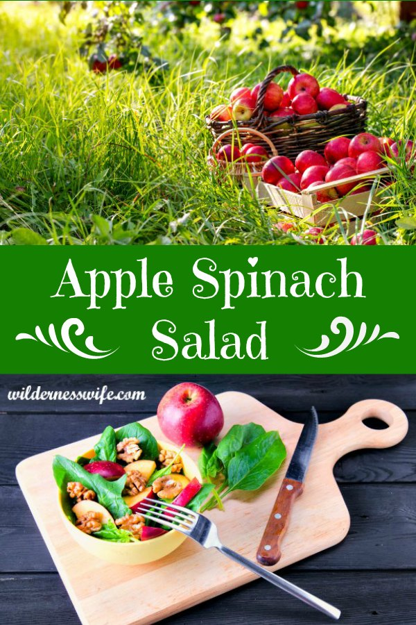 Composite photo with the title Apple Spinach Salad.  Top portion of photo shows a basket of apples in the grass in an apple orchard.  Bottom photo shows cutting board, knife, fork, apple, spinach leaves and bowl of salad.