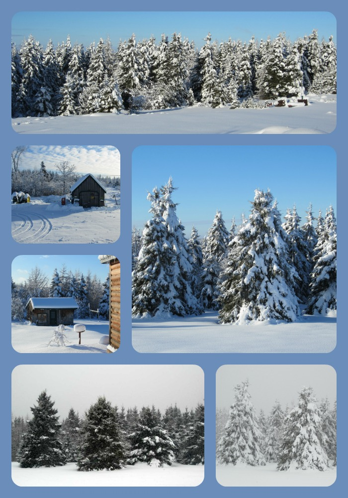 A collage of our homestead, The Haven, in the winter here in northern Maine.