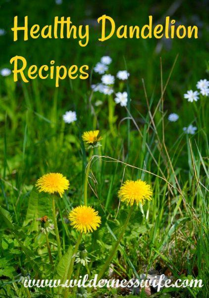dandelion, dandelions, dandelion rcipes, how to cook dandelions, sauteed dandelions, wilted dandelions, fiddleheads