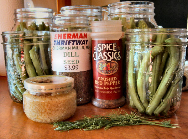 All the ingredients necessary to make this easy dilly bean recipe including minced garlic, dill seed, crushed red pepper, and fresh dill.