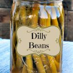 Jar of canned Dilly Beans made in our Dilly Bean water bath canning tutorial using our easy Dilly Bean recipe.