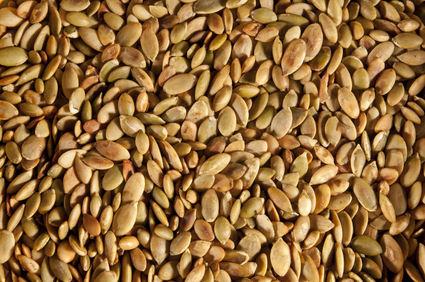 Tasty toasted pumpkin seeds
