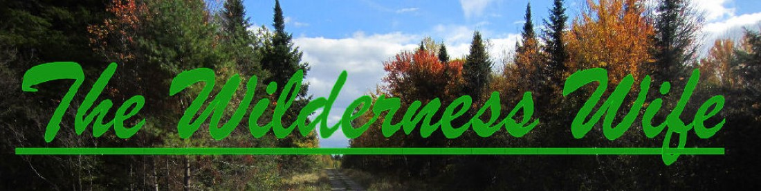 cropped-Wilderness-Wife-Fall-Foliage-Header-opt2.jpg