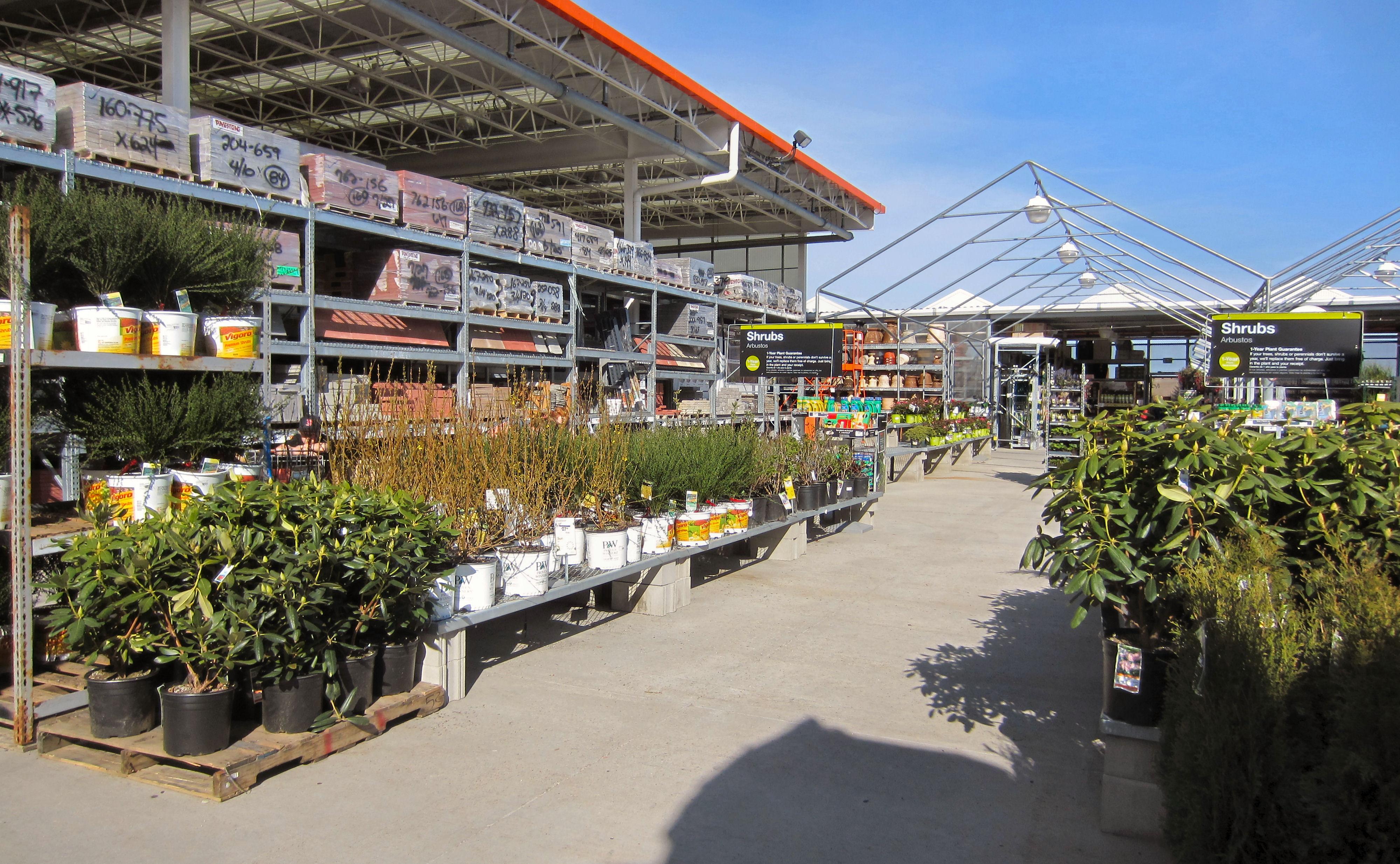 Home Depot garden center, annual plants, annual flowers, perennial plants, perennial flowers