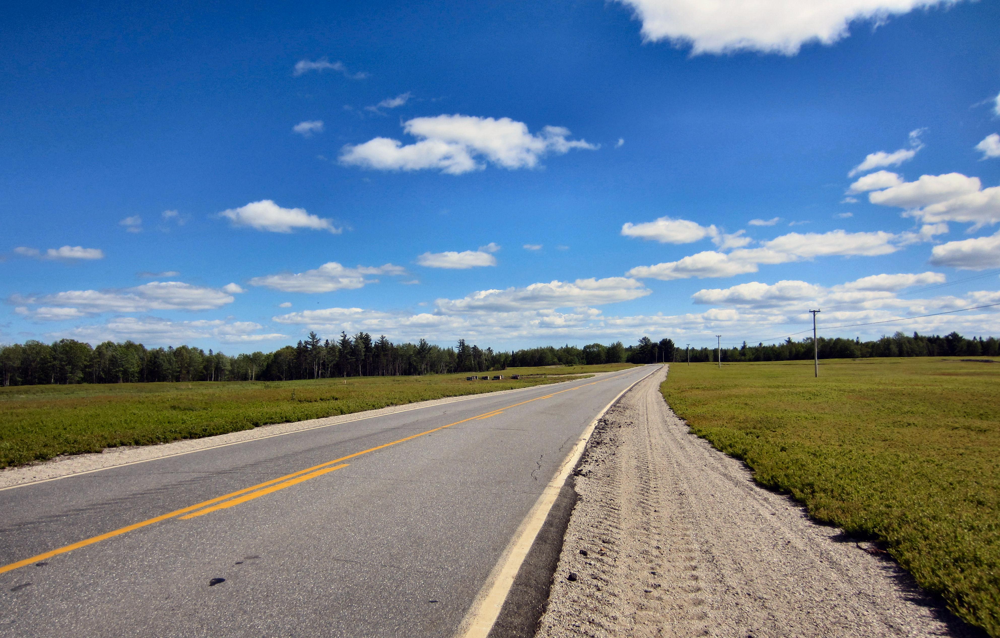 Ripley-trip-b-barrens-2, blueberrie fields in Maine, Maine Blueberries