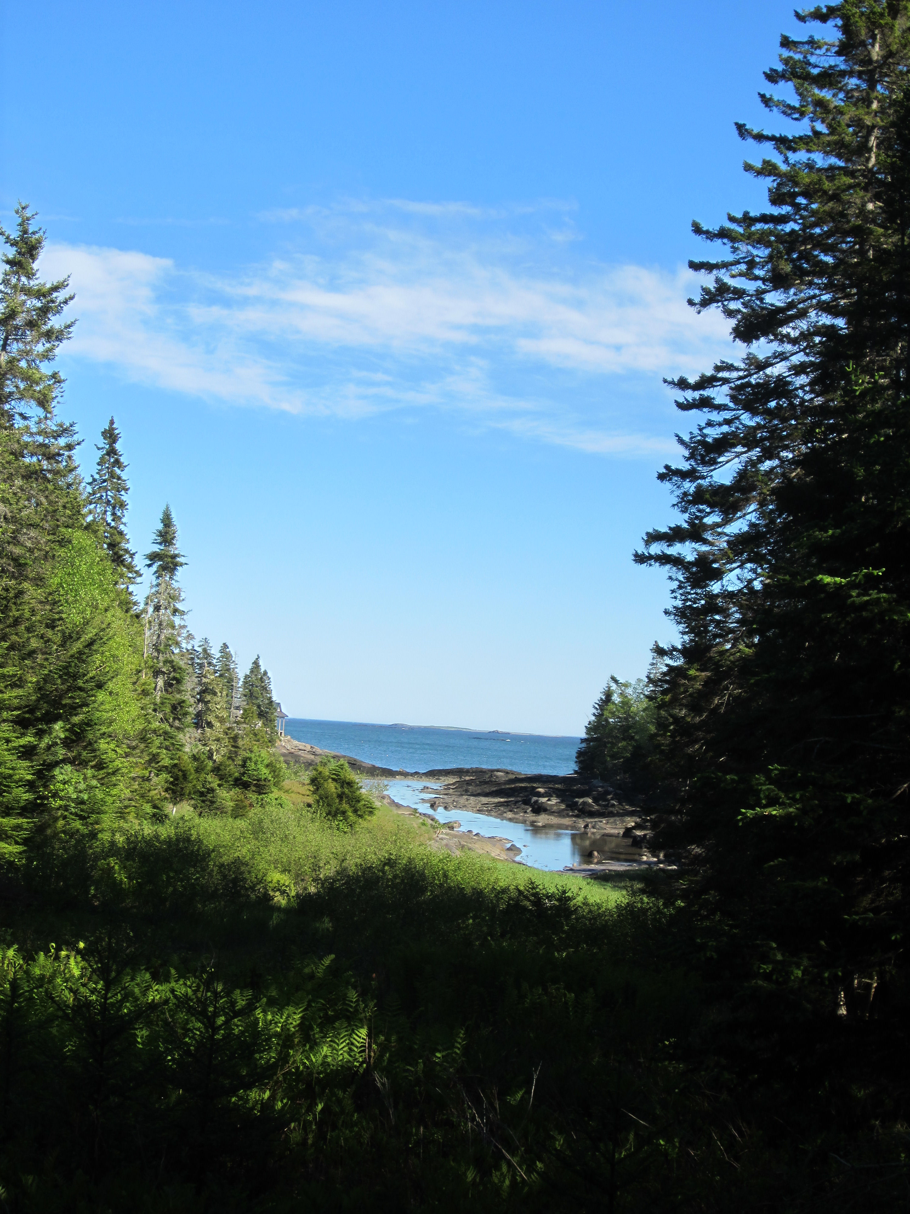 The view from Victorian shingle cottage on Ripley Point