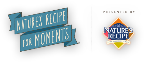 Recipe_For_Moments_Logo_595x257[1]