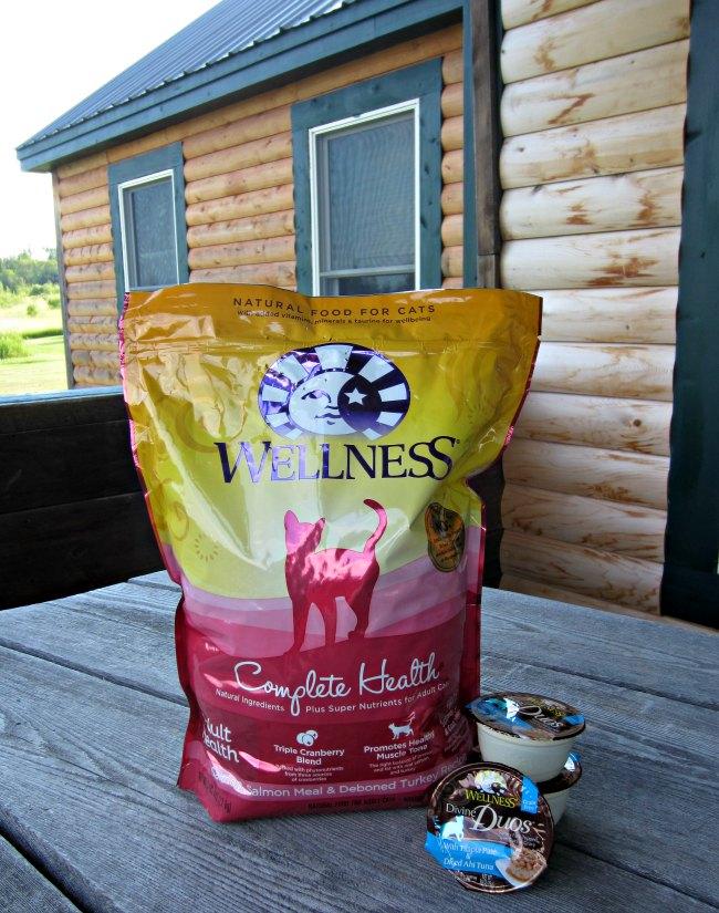 Wellness cat food, cat food, kitten food