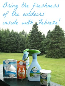 Pet odors, fresh smells, air freshener