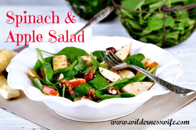 A delicious apple spinach salad in a white bowl with fork draped on side.