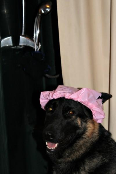 malibu-shower