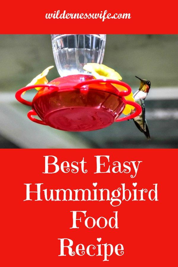 Ruby-throated hummingbird fluttering near a hummingbird feeder drinking the best easy hummingbird food recipe