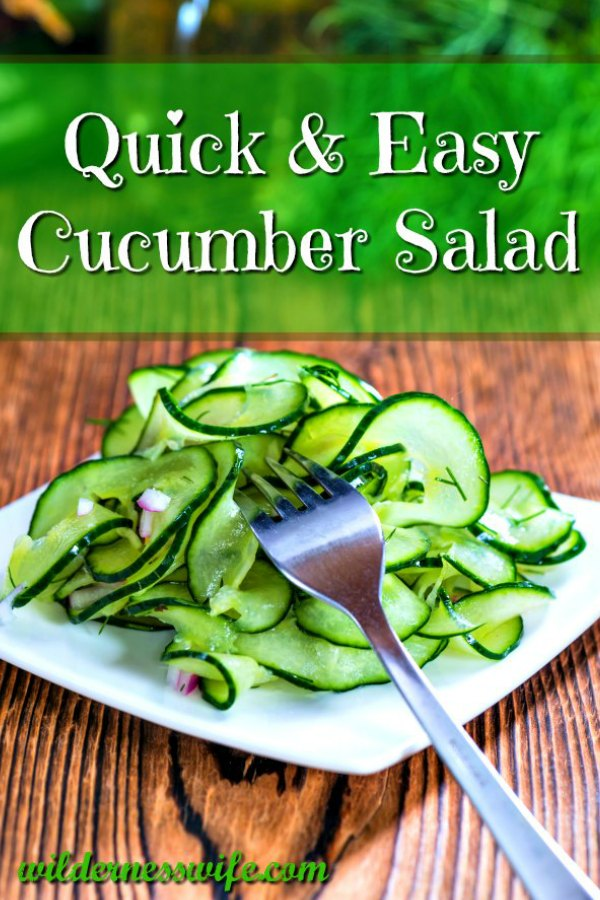 Crispy green Cucumber Salad on a white plate