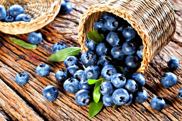 Maine Blueberries in an overturned basket on wood table