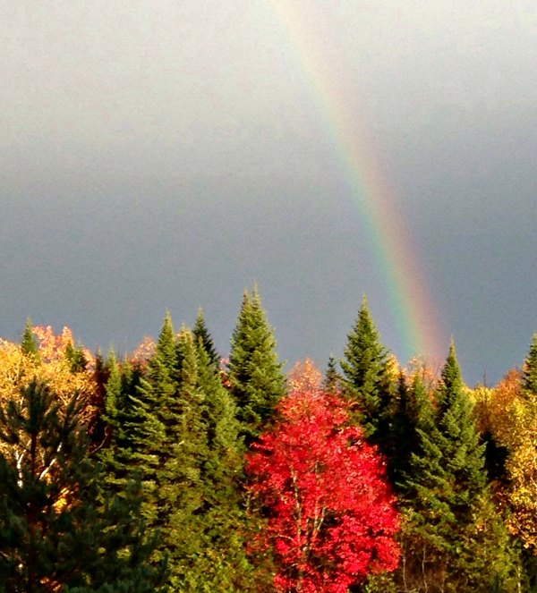 Rainbow on a fall day in the North Maine Woods