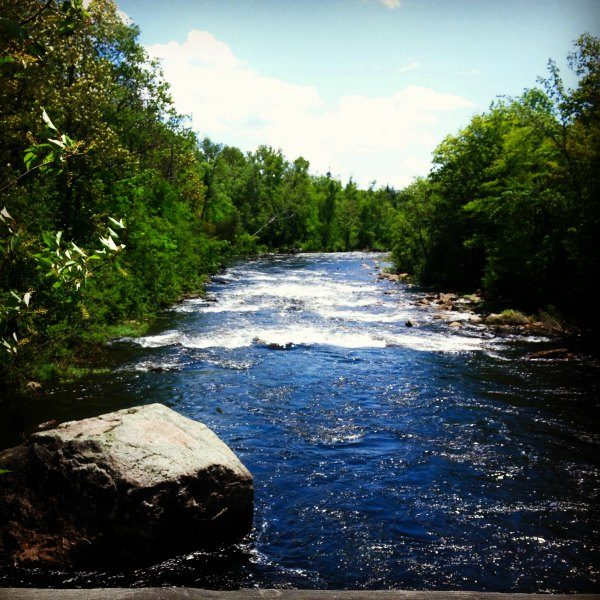 Rushing trout stream in the Maine North Woods